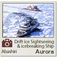Abashiri drift ice sightseeing icebreaking ship Aurora