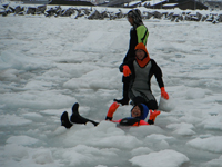 Drift ice experience